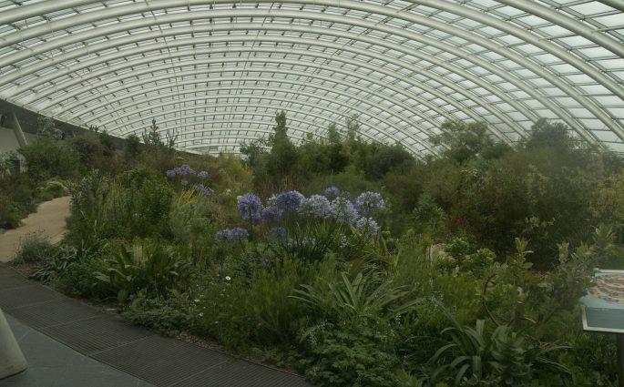 Botanic Gardens Llanarthney