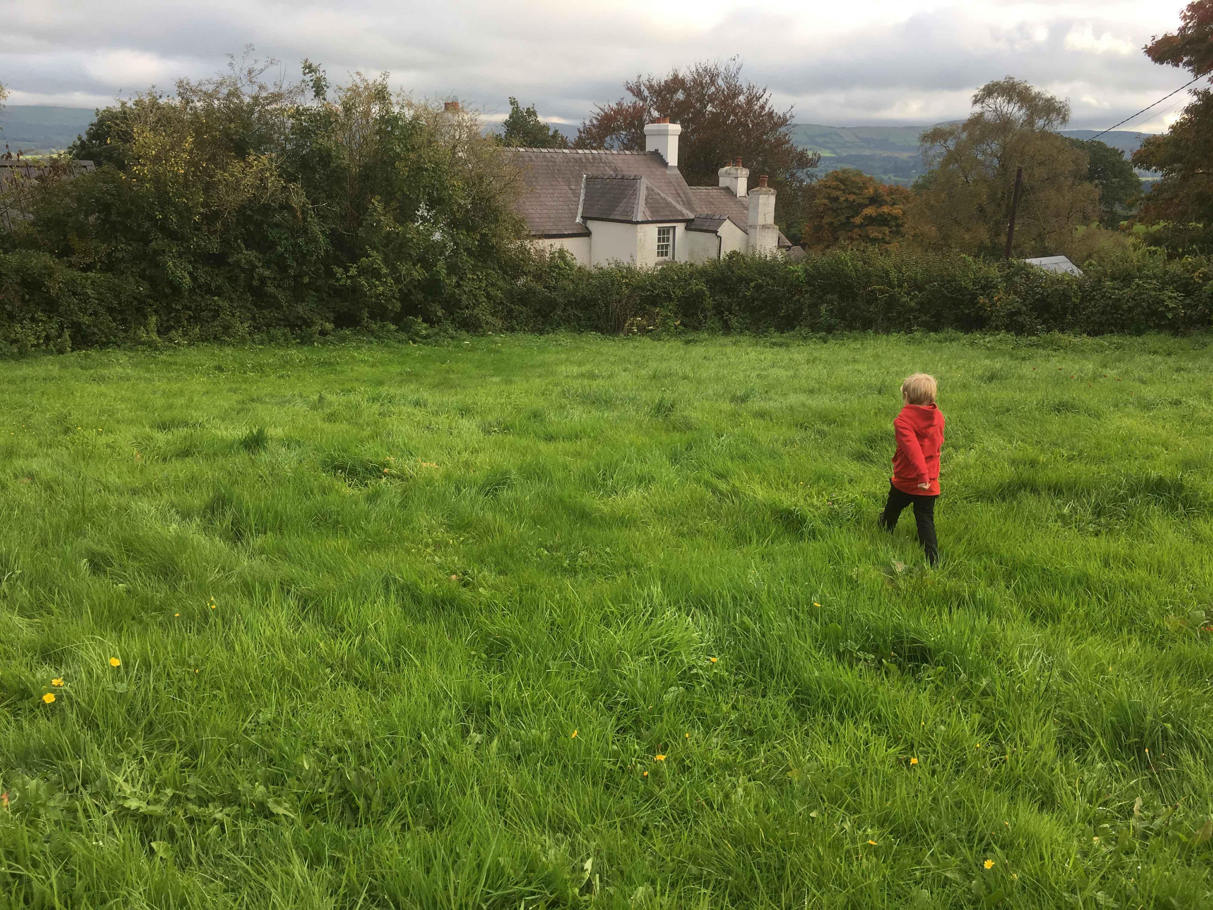 Rhandir-Llansadwrn-Llansadwrn-community-garden