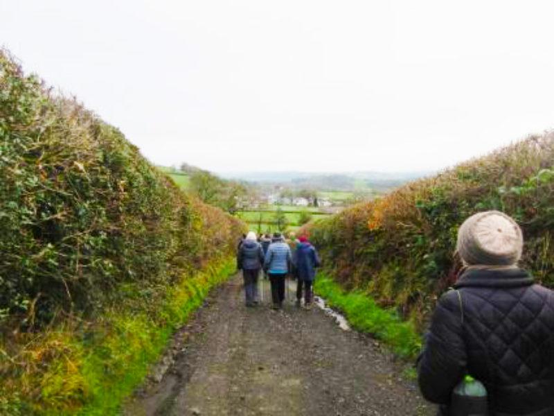Walking Well walkers in Llansadwrn